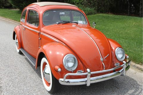 OUTSTANDING 1956 Volkswagen Beetle for sale